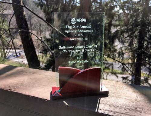 CEG design wins website award